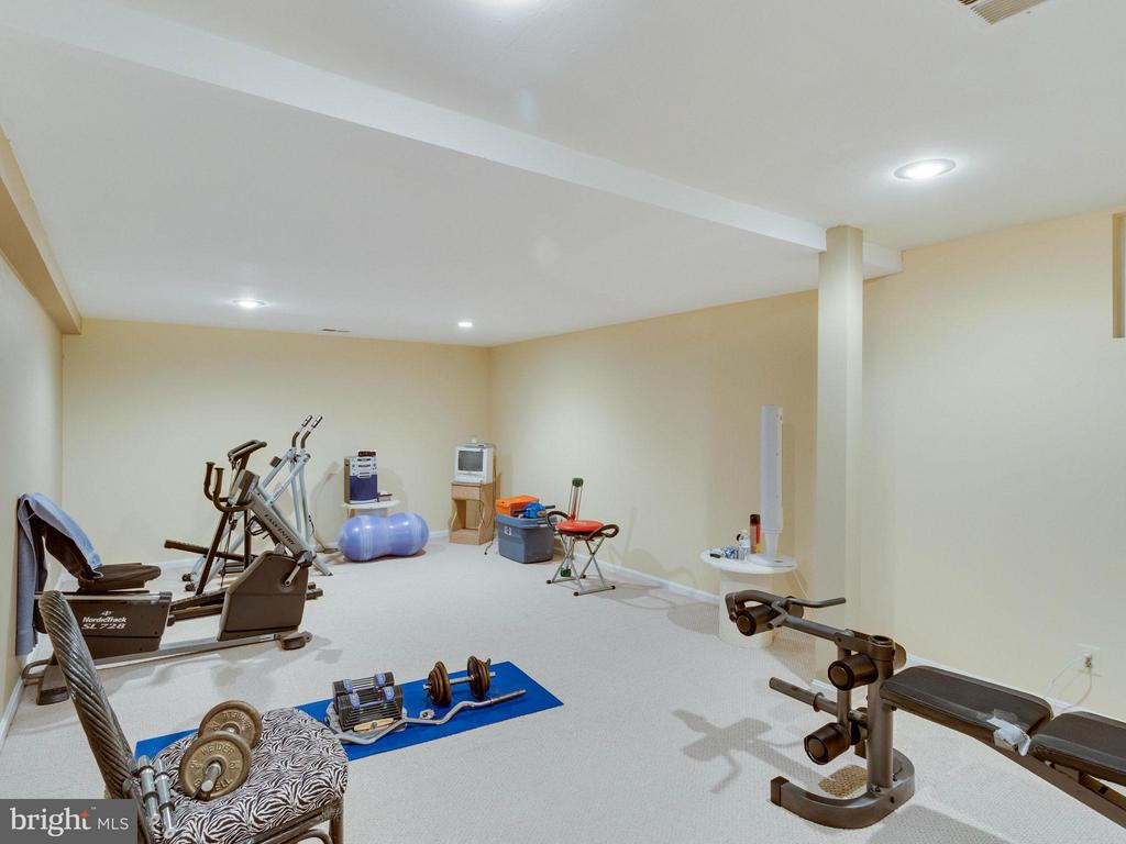 Exercise Room - 10618 CANTERBERRY RD, FAIRFAX STATION