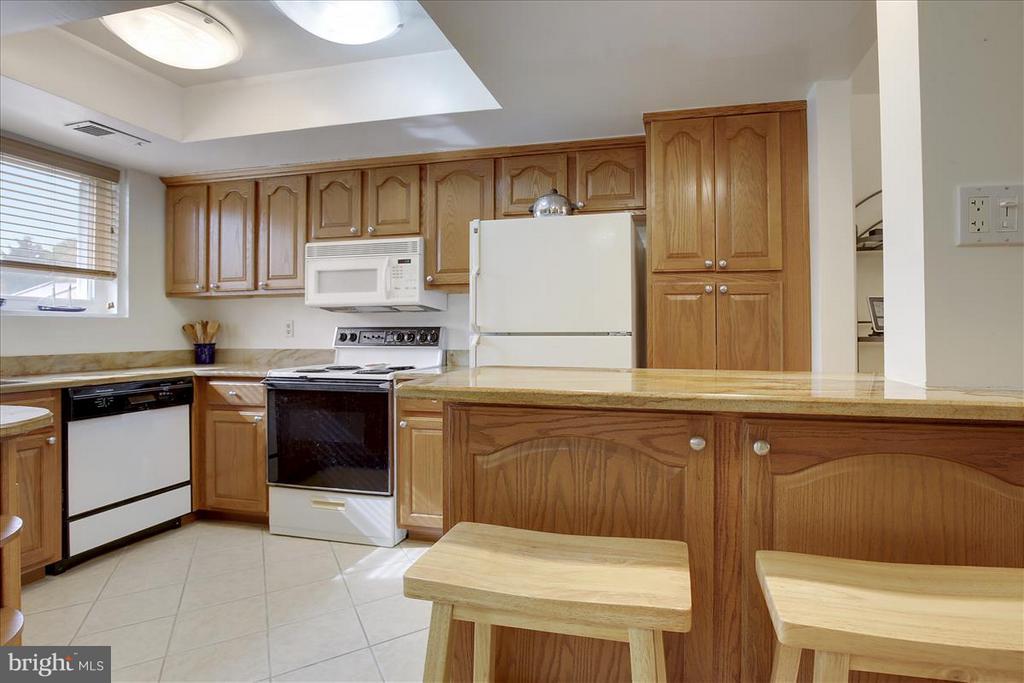 Unique Kitchen Design w/Breakfast Bar - 3206 GLENEAGLES DR #109, SILVER SPRING