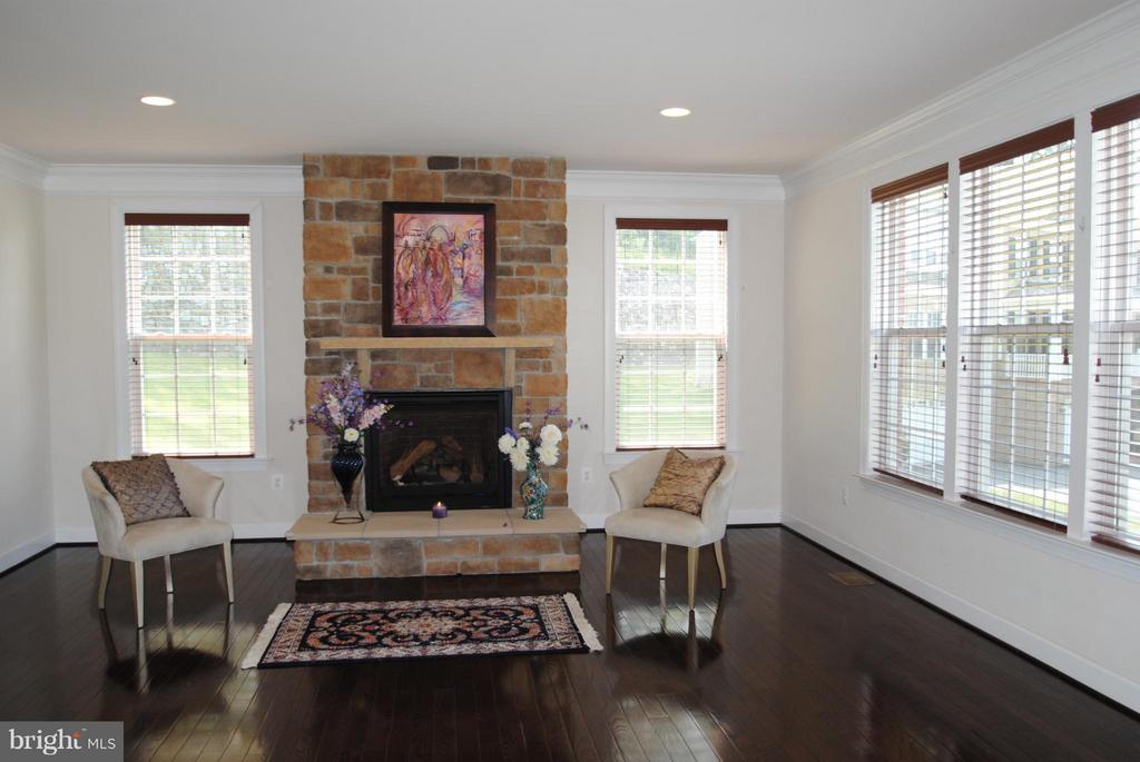 Family Room - 7480 PRESERVE CREST WAY, MCLEAN