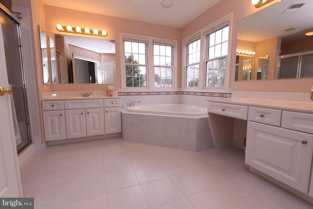 Separate Tub and Shower w/Double Vanities - 43499 CROSS BREEZE PL, ASHBURN