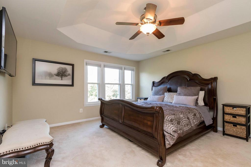 Spacious master bedroom with tray ceiling - 21043 ROAMING SHORES TER, ASHBURN