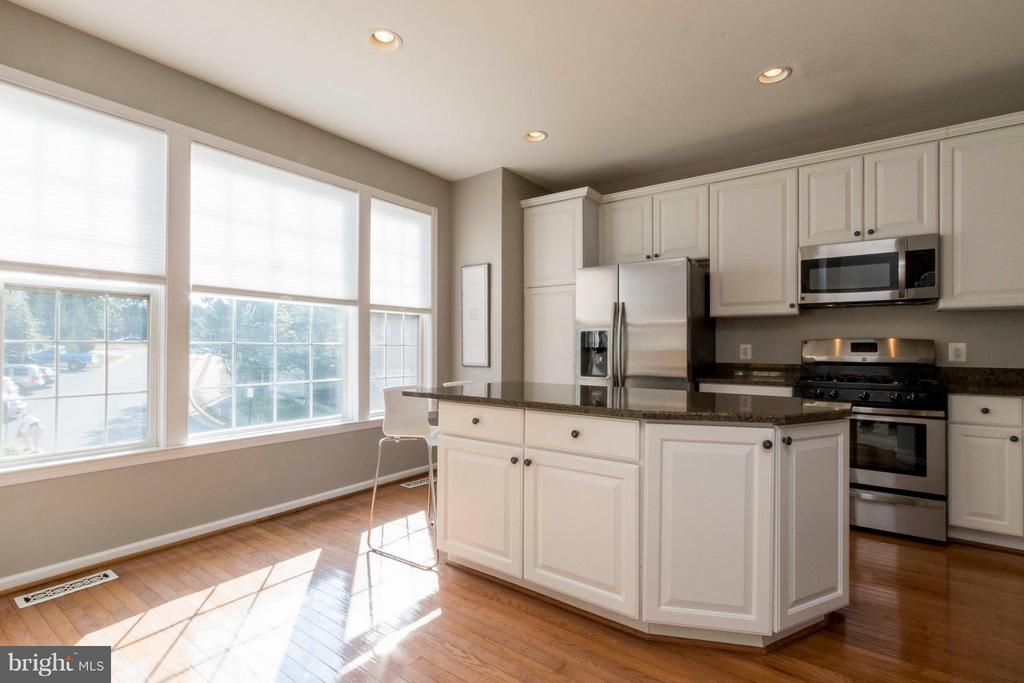 Stainless steel appliances, granite counters - 21043 ROAMING SHORES TER, ASHBURN
