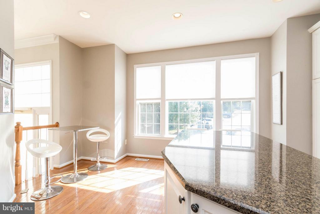 Bright and sunny with breakfast nook - 21043 ROAMING SHORES TER, ASHBURN