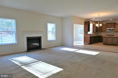 Family Room - -LOT 10 STILLWATER LN, FREDERICKSBURG