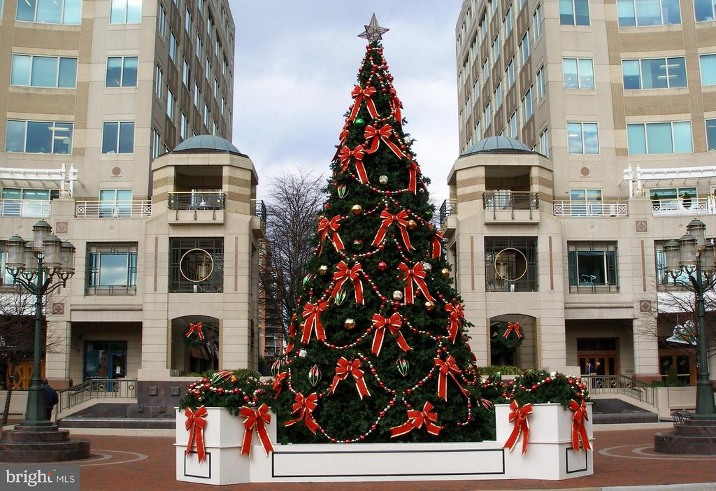 RTC Holiday Tree - 11990 MARKET ST #401, RESTON