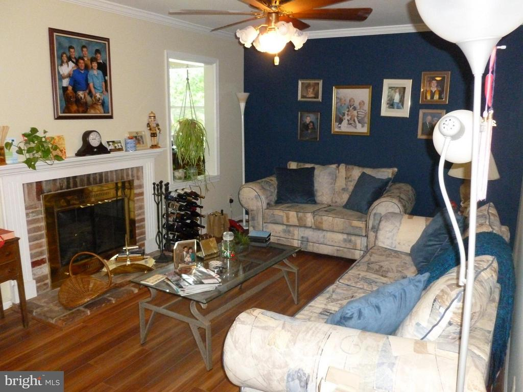 Family Room - 8738 ARLEY DR, SPRINGFIELD
