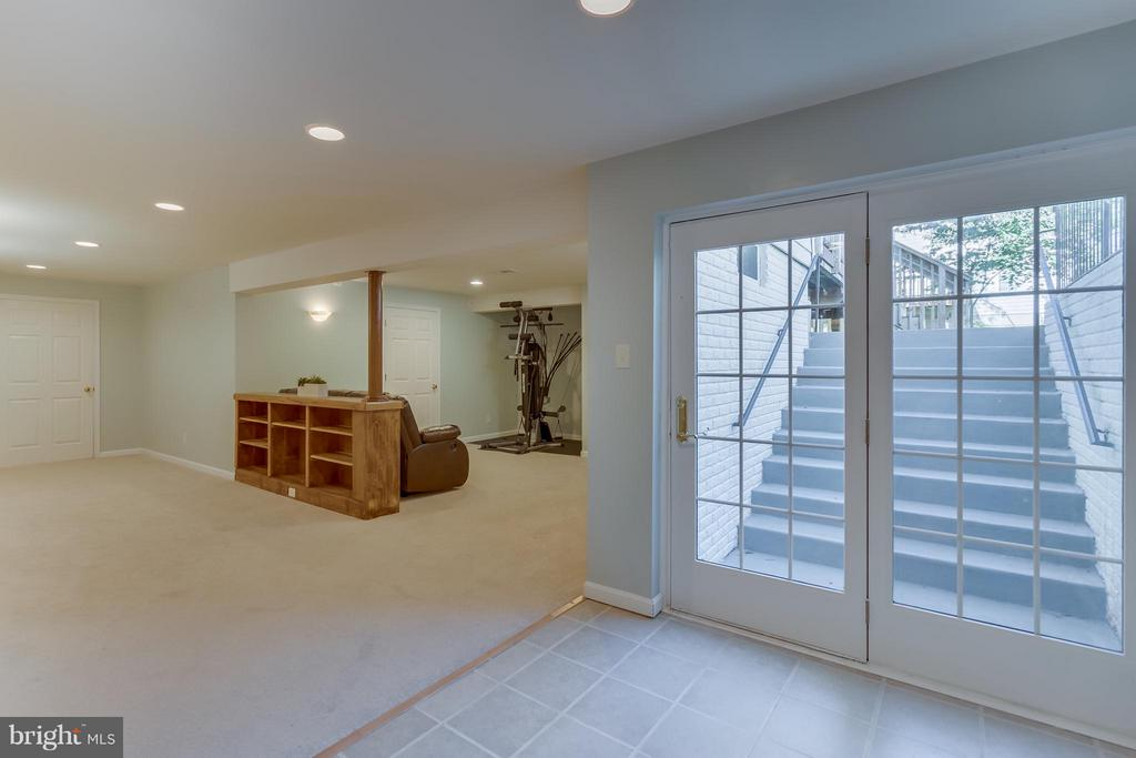 Basement With Outside Access - 25929 QUINLAN ST, CHANTILLY