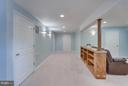 Basement - 25929 QUINLAN ST, CHANTILLY