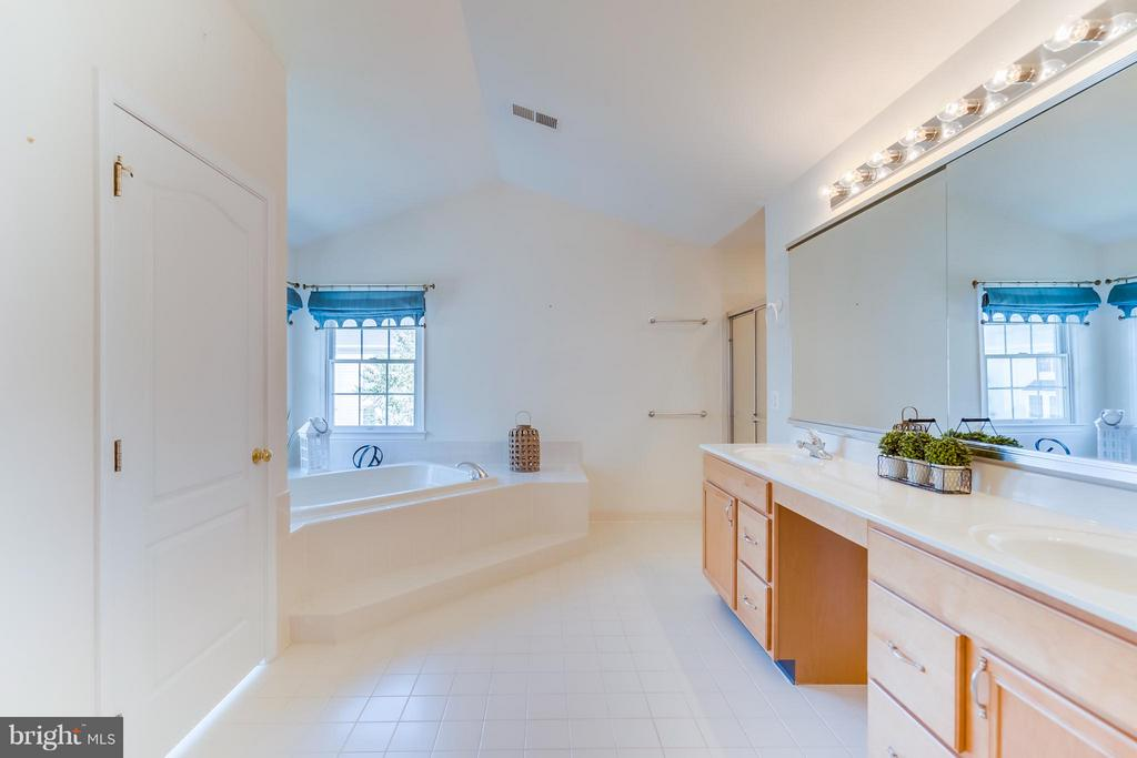 Large Master Bath - 25929 QUINLAN ST, CHANTILLY