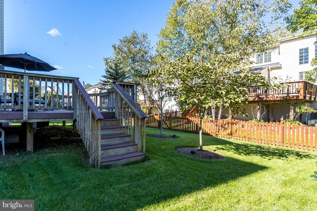 Backyard - 25929 QUINLAN ST, CHANTILLY