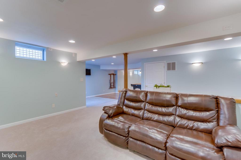 Basement - 25929 QUINLAN ST, CHANTILLY