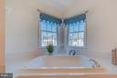 Master Soaking Tub - 25929 QUINLAN ST, CHANTILLY