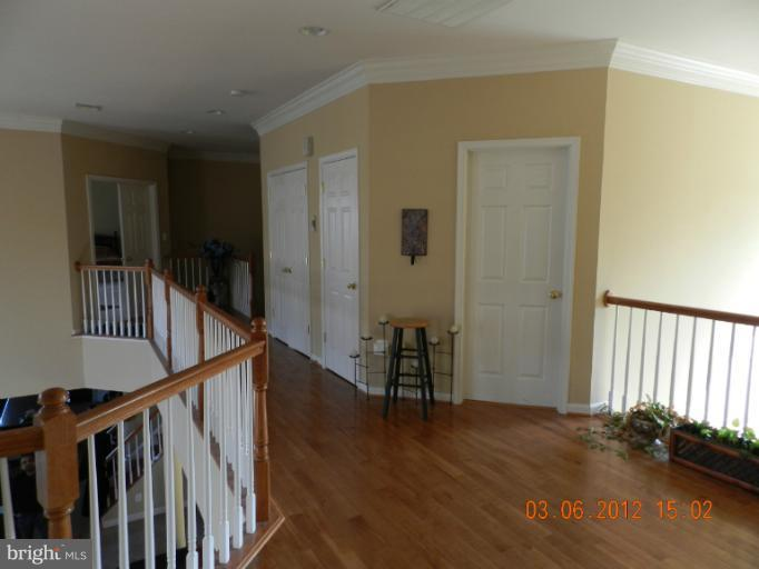 Interior (General) - 22454 PINE TOP CT, ASHBURN