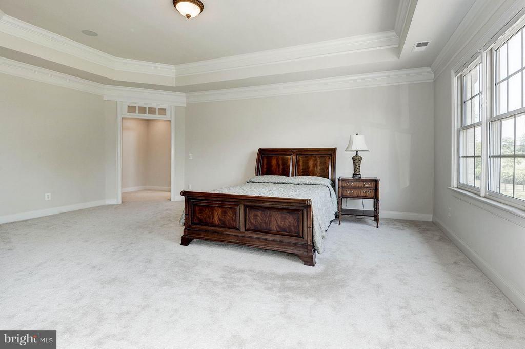 Bedroom (Master) - 40471 GRENATA PRESERVE PL, LEESBURG