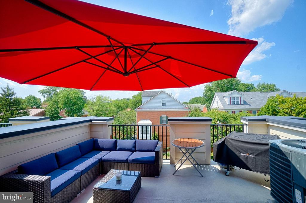 Roof Top Deck! - 1145 MONROE ST S, ARLINGTON