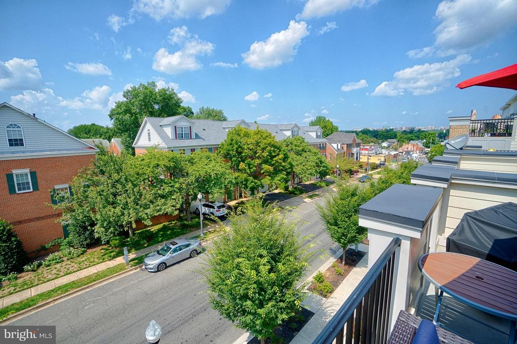 Tree tops! - 1145 MONROE ST S, ARLINGTON