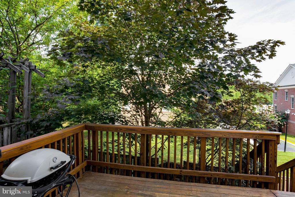 View off Deck - 2126 HUTCHISON GROVE CT, FALLS CHURCH