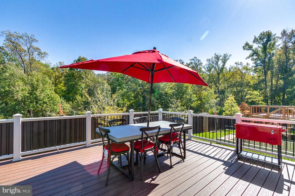 Expansive Composite Deck Backing to Tree - 9071 BEAR BRANCH PL, FAIRFAX