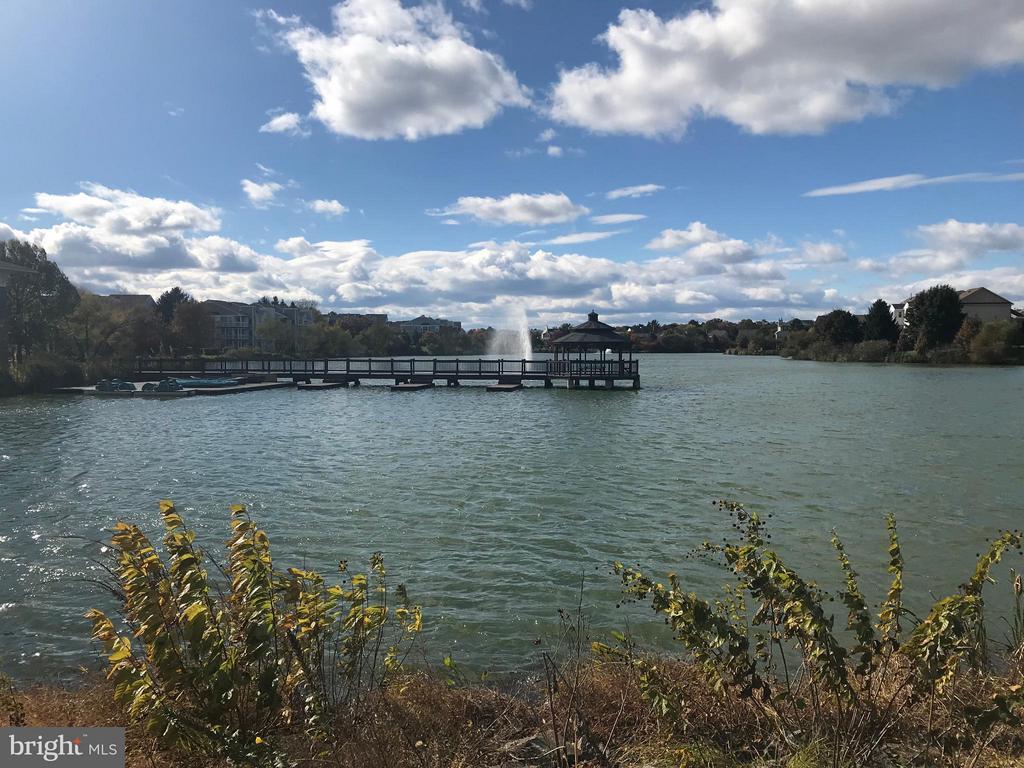 Lake View - 20596 CORNSTALK TER #201, ASHBURN