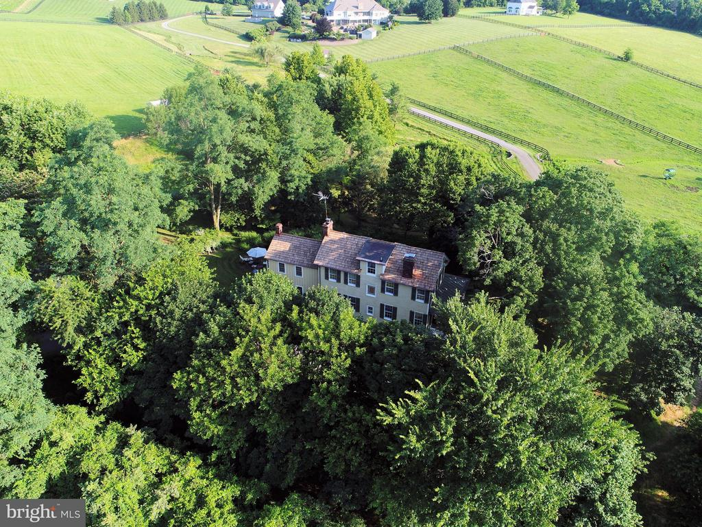 House is tucked into a 100 year old stand of trees - 15286 LOYALTY RD, WATERFORD