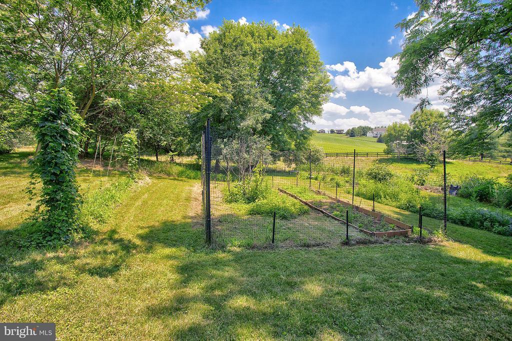 Vegetable garden - 15286 LOYALTY RD, WATERFORD
