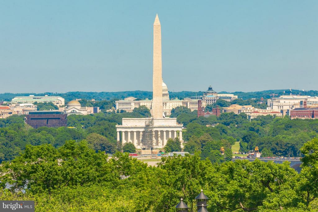 View of DC skyline & monuments - 1200 NASH ST N #551, ARLINGTON