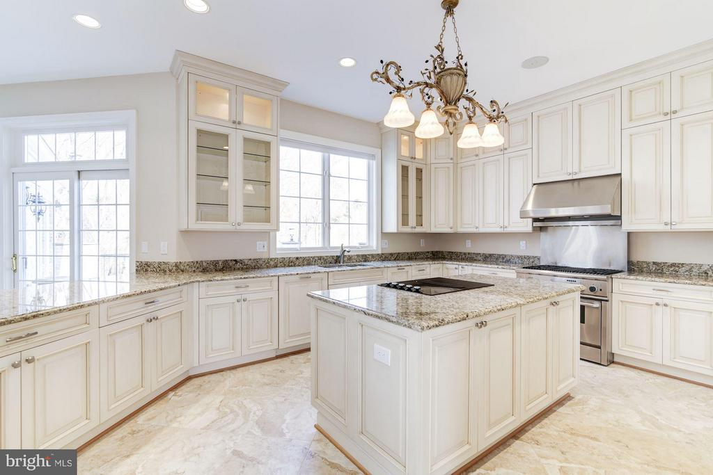 High end cabinets, fixtures, and appliances - 11308 HEARTH CT, GREAT FALLS