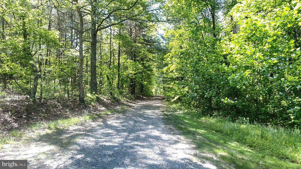 View - 5701 PARTLOW RD, PARTLOW