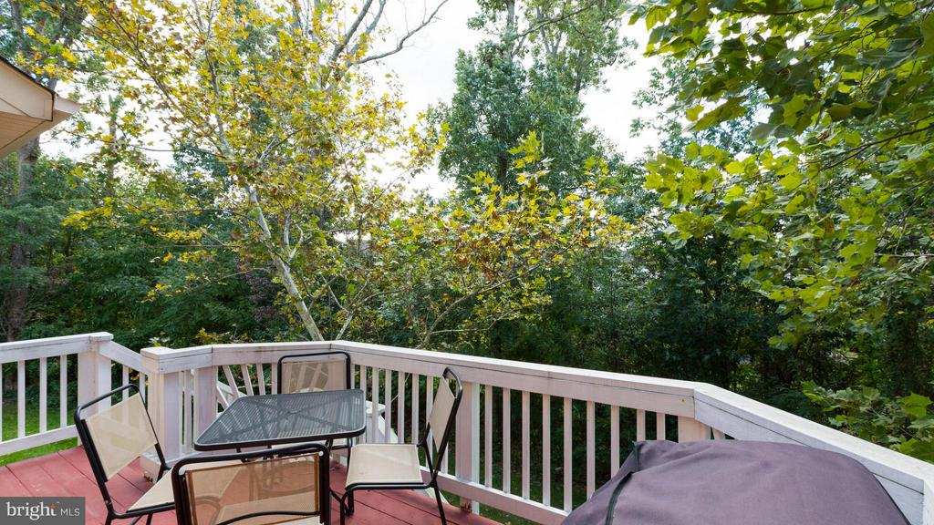 Private setting backing to trees! - 43573 DUNHILL CUP SQ, ASHBURN