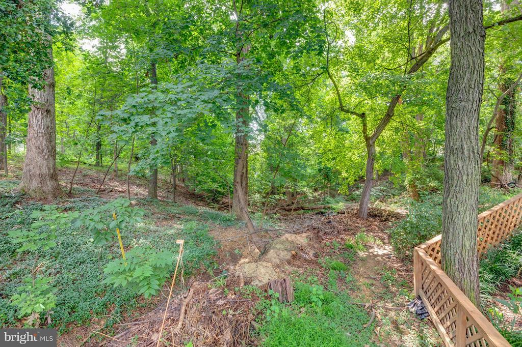 Private woods in back never to be built - 5713 PALIN PL, ALEXANDRIA