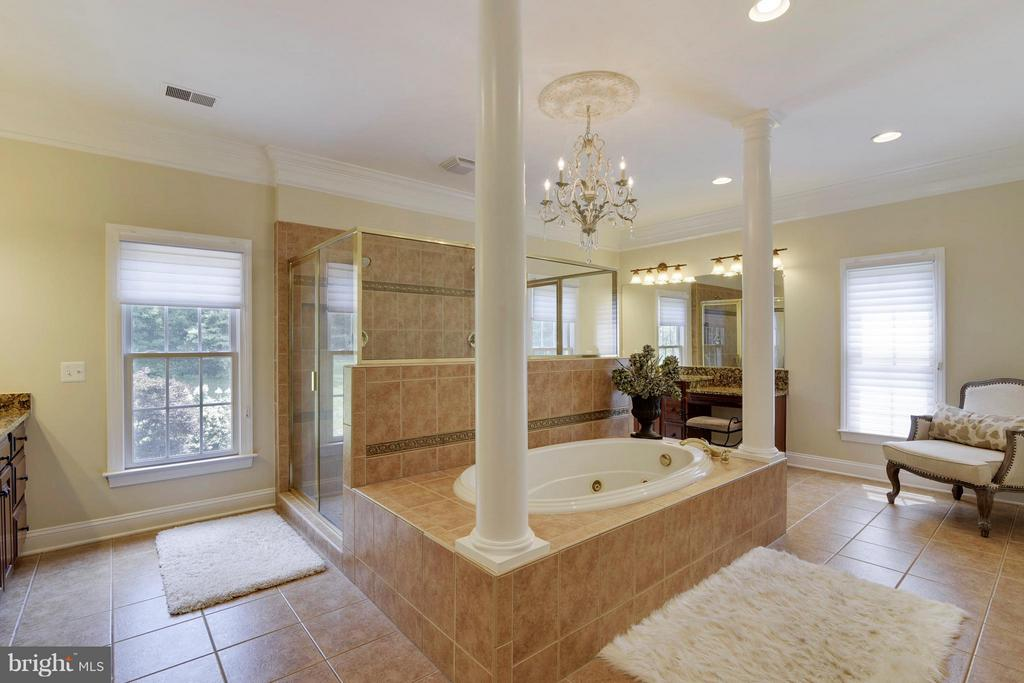 Master bath with upgraded master shower. - 27744 PADDOCK TRAIL PL, CHANTILLY
