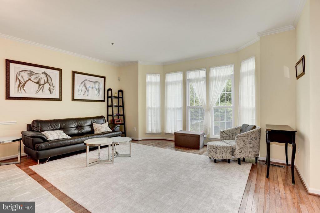Living Room - 12493 LUCAS DR, FAIRFAX