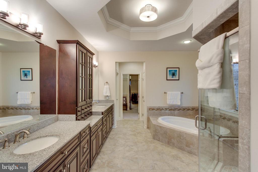 Luxurious master bath and attached dressing room - 9427 FERRY LANDING CT, ALEXANDRIA