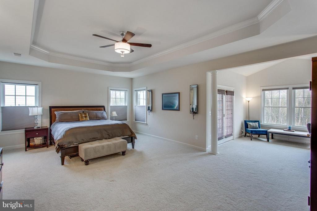 Palatial master suite with sitting room and porch - 9427 FERRY LANDING CT, ALEXANDRIA