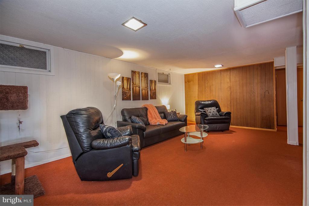 Family Room/Den in Basement - 5202 CEDAR RD, ALEXANDRIA