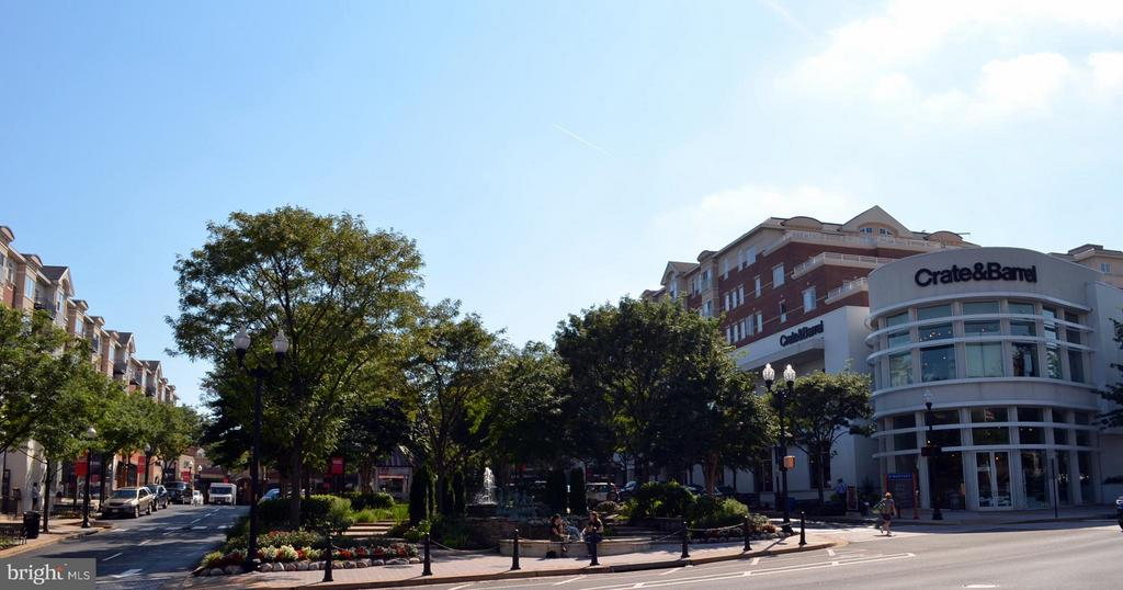 Stroll down to Market Common Clarendon - 2330 14TH ST N #201, ARLINGTON