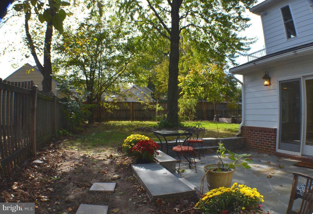 Bluestone patio great for parties. Custom Canopy. - 3804 14TH ST N, ARLINGTON