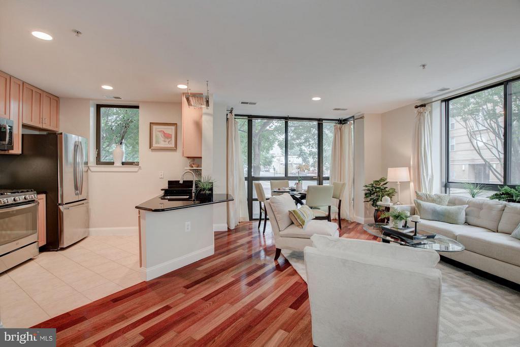 Living Room and open Kitchen - 1200 HARTFORD ST N #112, ARLINGTON