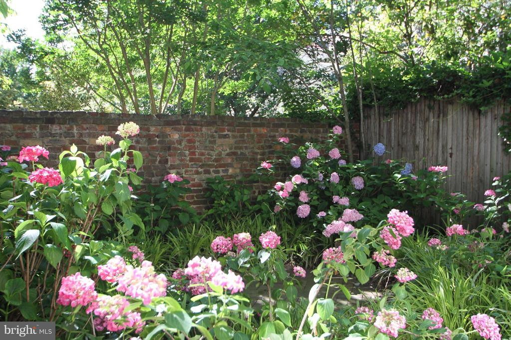 Beautiful flower garden filled with hydrangeas - 727 LEE ST S, ALEXANDRIA