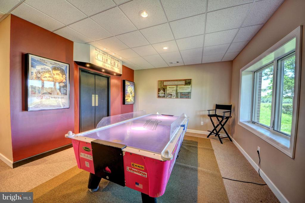 Lower Level Air Hockey - 7480 DON RD, MINERAL