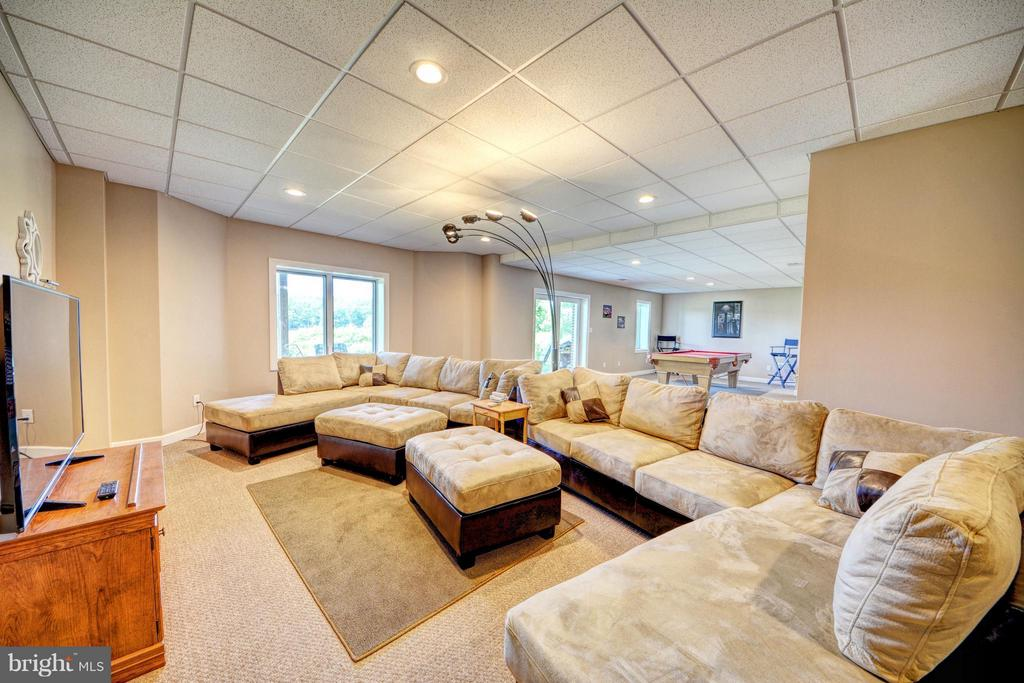 Lower Level Rec Room - 7480 DON RD, MINERAL