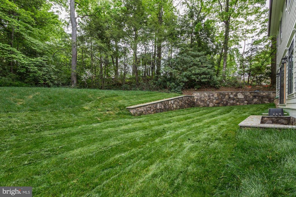 Large rear yard full of trees & privacy - 3411 WOODROW ST, ARLINGTON