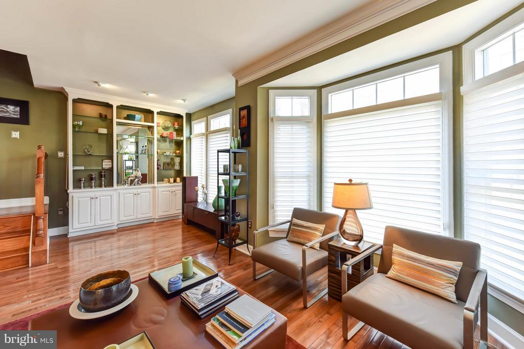 Living Room with custom built-ins - 505 THOMAS ST N, ARLINGTON