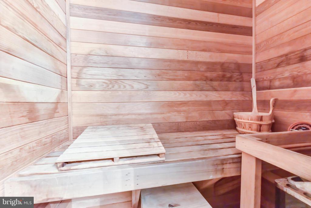 Fabulous sauna! - 505 THOMAS ST N, ARLINGTON