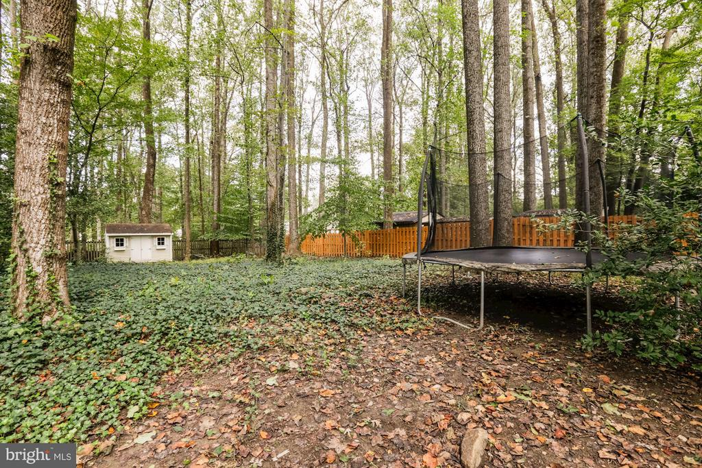 Very large, wooded back yard - 5811 FITZHUGH ST, BURKE