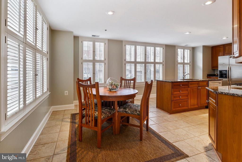 Plantation Shutters Provide both Light and Privacy - 1555 COLONIAL TER #501, ARLINGTON