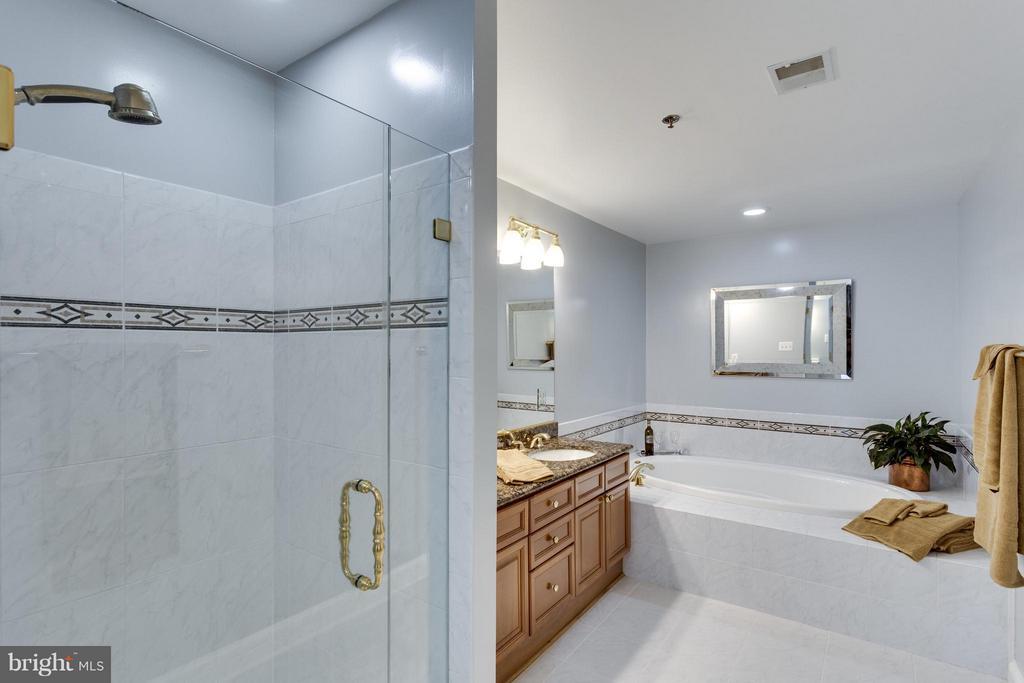 Separate Shower - 1555 COLONIAL TER #501, ARLINGTON