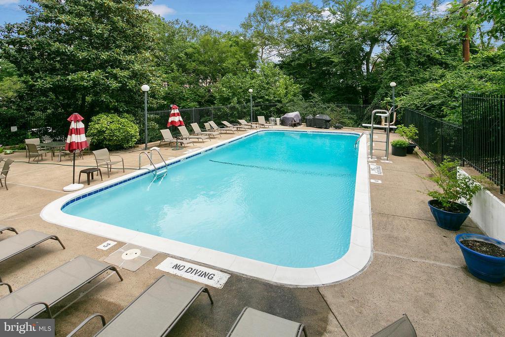 Community Pool! - 1515 ARLINGTON RIDGE RD S #503, ARLINGTON