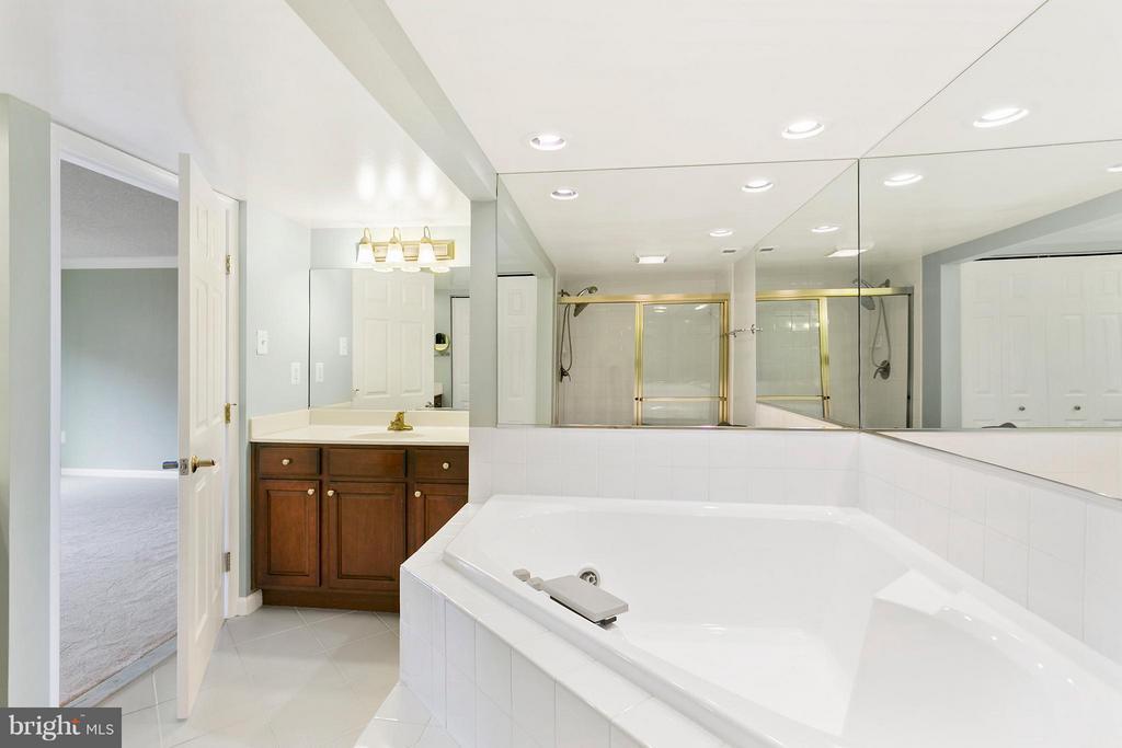 Luxury Bath (Master) - 1515 ARLINGTON RIDGE RD S #503, ARLINGTON