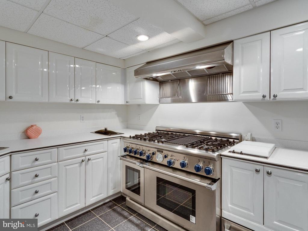Catering Kitchen with High End Appliances. - 2107 POLO POINTE DR, VIENNA